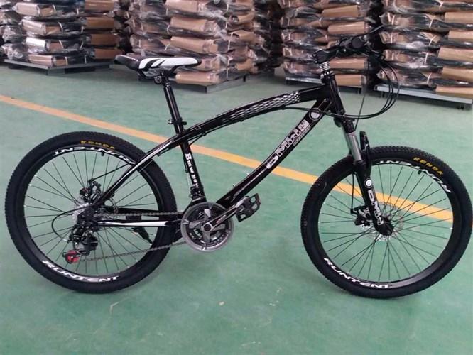 Велосипед на спицах BMW 24 R