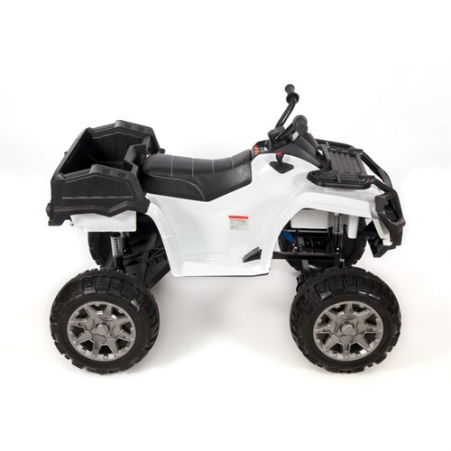 Квадроцикл 0909 Grizzly Next 4x4